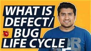 Bug Life Cycle explained